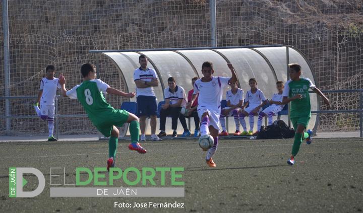 Importante victoria del Fundación Real Jaén Infantil frente a Quesada CD