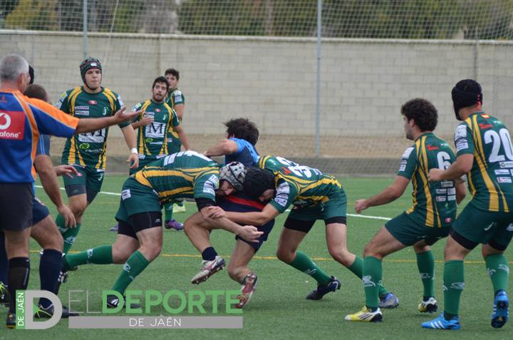 Importante victoria del Jaén Rugby