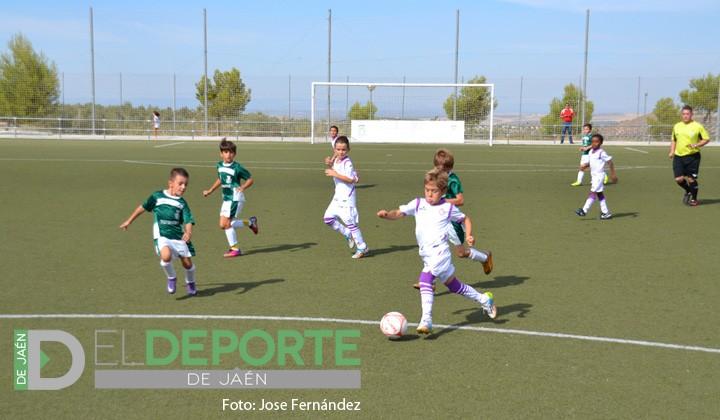 Positivo fin de semana para los chicos de las categorías inferiores del Real Jaén