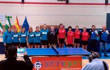 Linares volverá a ser sede de la Liga Europea Femenina de tenis de mesa