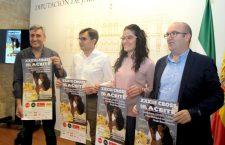 El XXXIII Cross del Aceite de Torredonjimeno reunirá el domingo a más de 2.000 participantes