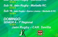 El Jaén Rugby vuelve a Las Lagunillas con una variada remesa de partidos