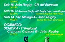 El Jaén Rugby afronta una nueva jornada con varios compromisos de competición