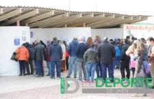 El Linares Deportivo anuncia las medidas de seguridad para el partido ante el Real Jaén