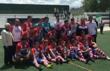El UDC Torredonjimeno se proclama campeón de la I Copa Federación Bujarkay