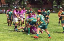 El Jaén Rugby asciende a División de Honor B