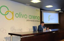 El inicio de la construcción del Olivo Arena, previsto para el final de este verano