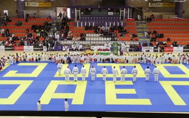 Judocas durante el trofeo de navidad ciudad de jaen