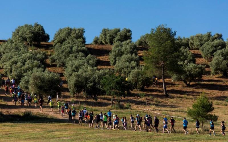 atletas participantes en el trail del fia el yelmo del pasado año