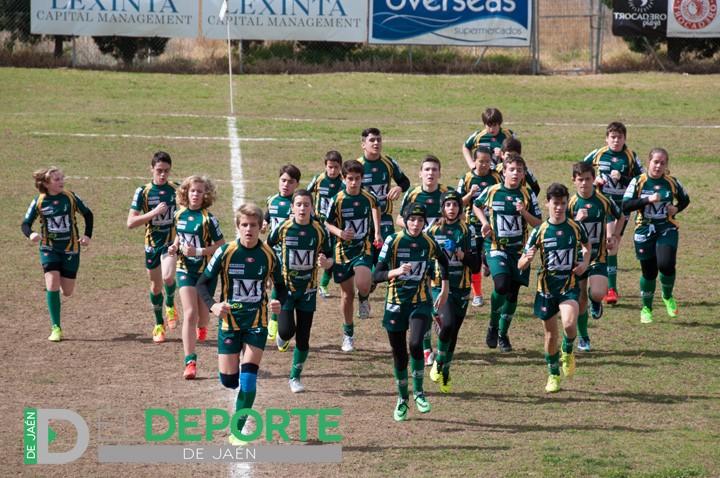 El equipo sub14 del Jaén Rugby se enfrerará a CR Marbella en la semifinal del Campeonato de Andalucía