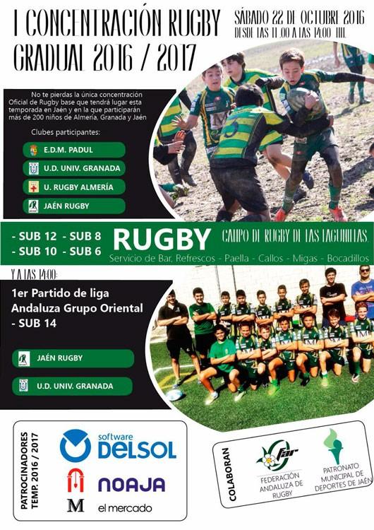 rugby_sub