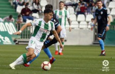 El Córdoba cae mientras el resto acerca objetivos