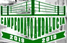 Cuatro boxeadores jiennenses competirán en el Campeonato de Andalucía
