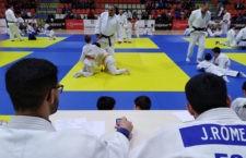 La Copa Diputación de Judo reunió a más  de 500 deportistas de toda la provincia