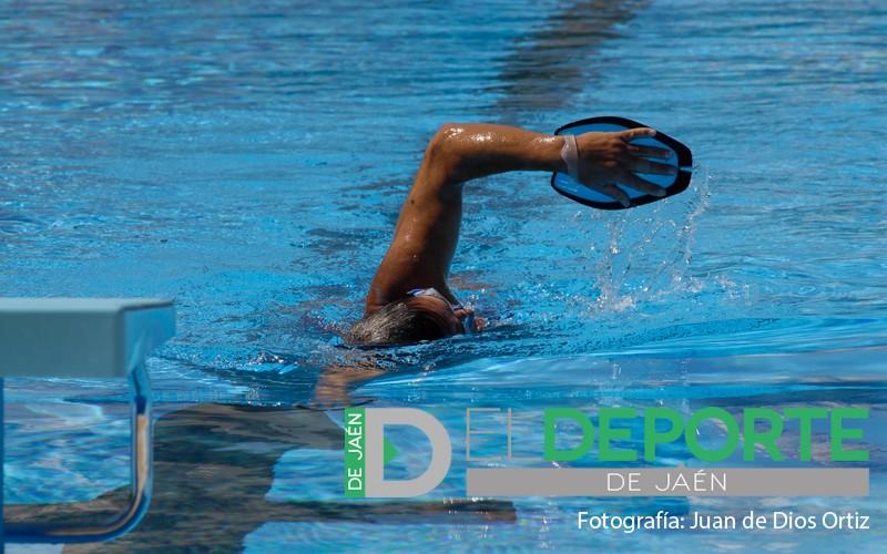 natación jaén