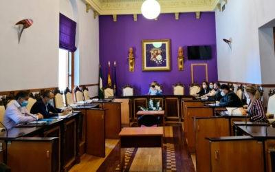 La comisión aplaza su primera sesión. Foto: Ayto. Jaén.
