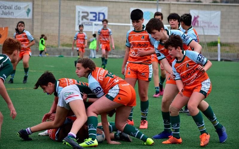jaén rugby sub-14